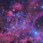 Vela Supernova
