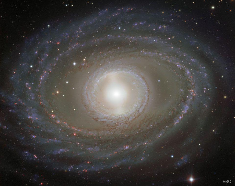 """La galaxia espiral""""NGC 1398"""", una puerta en el tiempo para contemplar la extinción de los dinosaurios"""